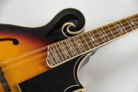 Gold Tone GM 35 F Style Mandolin with Case